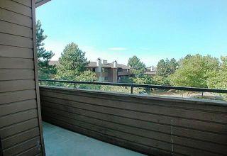 """Photo 9: 304 7297 MOFFATT Road in Richmond: Brighouse South Condo for sale in """"DORCHESTER CIRCLE"""" : MLS®# R2195127"""
