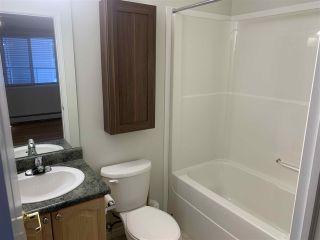 Photo 11: 115 14259 50 Street in Edmonton: Zone 02 Condo for sale : MLS®# E4230611