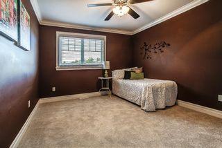 "Photo 13: 24318 102 Avenue in Maple Ridge: Albion House for sale in ""Castle Brook"" : MLS®# R2126861"
