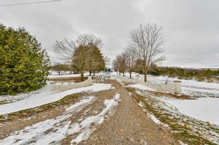Photo 5: 433334 4th Line in Amaranth: Rural Amaranth House (Bungalow) for sale : MLS®# X4977580