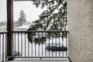 Photo 21: 2315 1 Street NE in Calgary: Tuxedo Park Row/Townhouse for sale : MLS®# A1086504