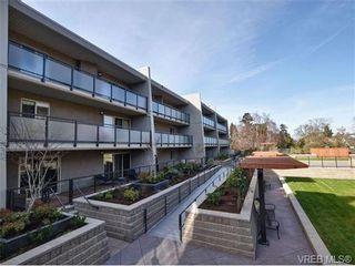 Photo 16: 307 1419 Stadacona Ave in VICTORIA: Vi Fernwood Condo for sale (Victoria)  : MLS®# 694240
