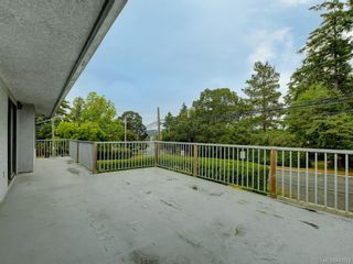 Photo 17: 4174 Glanford Ave in Saanich: SW Glanford House for sale (Saanich West)  : MLS®# 843773