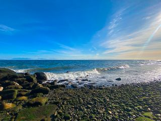 Photo 11: Lot 17 DL 71: Galiano Island Land for sale (Islands-Van. & Gulf)  : MLS®# R2616795