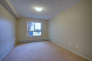Photo 4: 304, 17011 67 Avenue NW: Edmonton Condo for rent