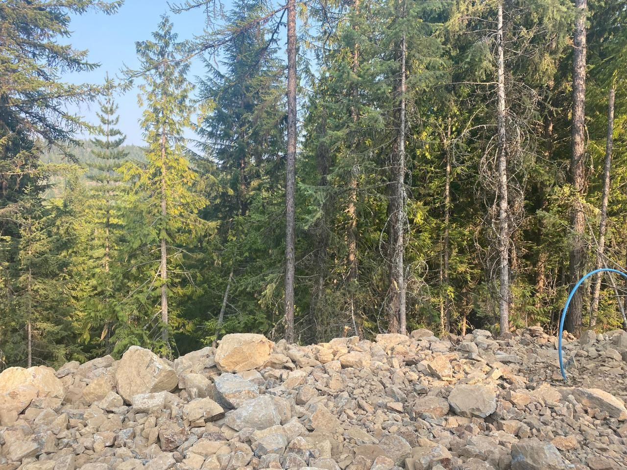 Main Photo: Lot 4 RED MOUNTAIN ROAD in Rossland: Vacant Land for sale : MLS®# 2460252