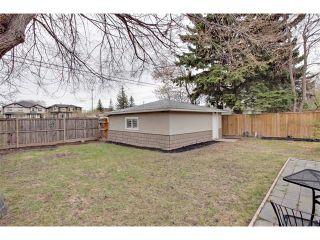Photo 38: 419 49 Avenue SW in Calgary: Elboya House for sale : MLS®# C4008059