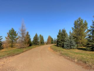 Photo 7: 53134 RR 225 Road: Rural Strathcona County Land Commercial for sale : MLS®# E4265746