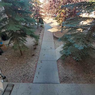 Photo 33: 2207 11214 80 Street in Edmonton: Zone 09 Condo for sale : MLS®# E4257884