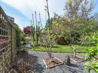 Photo 57: 1476 Jackson Dr in COMOX: CV Comox Peninsula House for sale (Comox Valley)  : MLS®# 810423