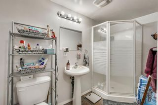 Photo 14: 168 Dover Meadow Close SE in Calgary: Dover Detached for sale : MLS®# A1082428
