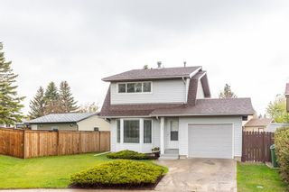 Photo 1: 132 Pineland Place NE in Calgary: Pineridge Detached for sale : MLS®# A1110576