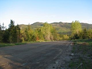 Main Photo: SW 1/4 DL 1680 ROAD 2A FSR in No City Value: Out of Town Land for sale : MLS®# R2603759