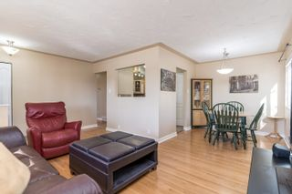 Photo 8: 8710 64 Avenue in Edmonton: Zone 17 House for sale : MLS®# E4266247
