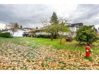 Photo 17: 14124 113A AVENUE in Surrey: Bolivar Heights House for sale (North Surrey)  : MLS®# R2222522