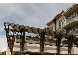 "Photo 15: 306 6011 NO 1 Road in Richmond: Terra Nova Condo for sale in """"Terra West Square"" in Terra Nova"" : MLS®# V1080357"
