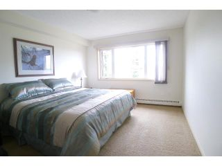 Photo 11: 303 790 KINGSMERE Crescent SW in CALGARY: Kingsland Condo for sale (Calgary)  : MLS®# C3627331