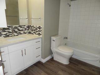 Photo 20:  in Edmonton: Zone 29 Condo for sale : MLS®# E4248069