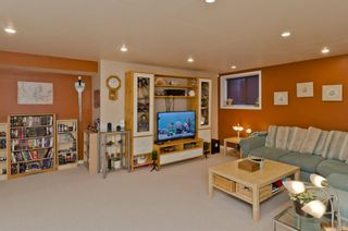 Photo 42: 32 SKYVIEW SPRINGS Gardens NE in Calgary: Skyview Ranch Detached for sale : MLS®# A1118652