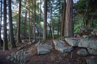 Photo 9: 578 ARBUTUS Drive: Mayne Island House for sale (Islands-Van. & Gulf)  : MLS®# R2504459