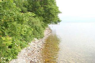 Photo 3: Lt 1&2 Shore Road in Brock: Rural Brock Property for sale : MLS®# N5281421