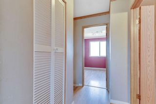 Photo 10: 106 Martindale Boulevard NE in Calgary: Martindale Detached for sale : MLS®# A1107169