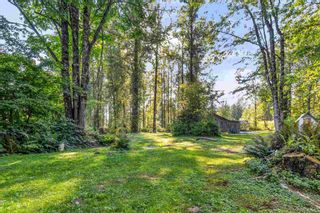 Photo 37: 36241 DAWSON Road in Abbotsford: Abbotsford East House for sale : MLS®# R2600791