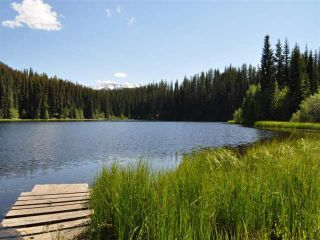 Photo 3: Mead Lake: Land for sale (Whistler)
