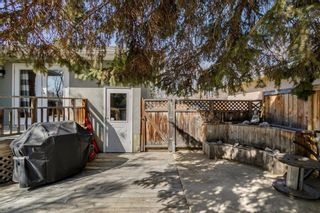 Photo 35: 436 38 Street SW in Calgary: Spruce Cliff Detached for sale : MLS®# A1097954