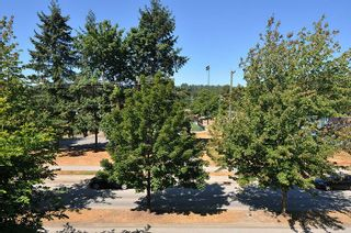 """Photo 14: 315 2468 ATKINS Avenue in Port Coquitlam: Central Pt Coquitlam Condo for sale in """"THE BORDEAUX"""" : MLS®# R2195449"""