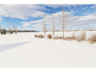 Photo 12: 101 CRANFORD Drive SE in Calgary: Cranston Residential Detached Single Family for sale : MLS®# C3647465