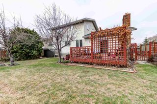 Photo 45: 10536 26 Avenue in Edmonton: Zone 16 House for sale : MLS®# E4241247