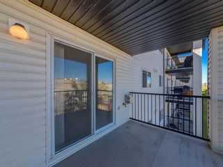 Photo 18: 1312 4975 130 Avenue SE in Calgary: McKenzie Towne Apartment for sale : MLS®# A1046077