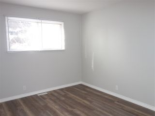 Photo 18: 8520 87 Street in Edmonton: Zone 18 House for sale : MLS®# E4228781