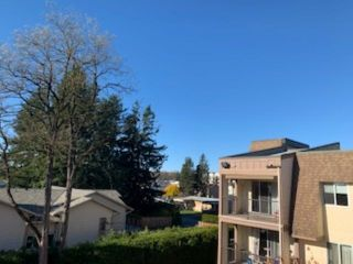 """Photo 13: 357 2821 TIMS Street in Abbotsford: Abbotsford West Condo for sale in """"PARKVIEW ESTATES"""" : MLS®# R2513444"""