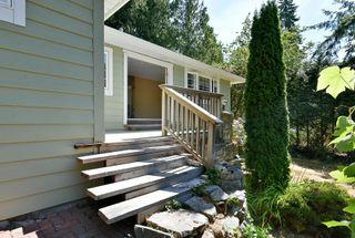 Photo 14: 1142 ROBERTS CREEK Road: Roberts Creek House for sale (Sunshine Coast)  : MLS®# R2612861
