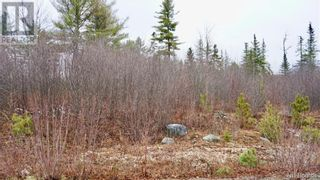 Photo 4: Lot #5 Route 740 in Heathland: Vacant Land for sale : MLS®# NB053418