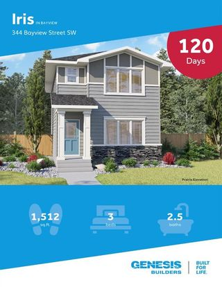 Photo 47: 344 Bayview Street SW: Airdrie Detached for sale : MLS®# A1128963
