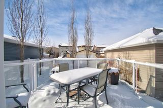 Photo 39: 202 Williamstown Close NW: Airdrie Detached for sale : MLS®# A1070134