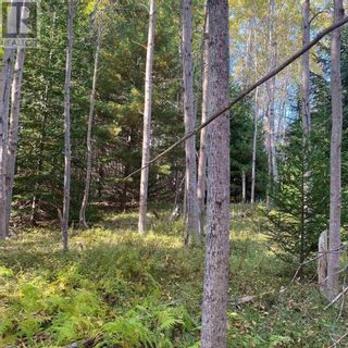 Photo 3: Acreage Middle New Cornwall in Middle New Cornwall: Vacant Land for sale : MLS®# 202125307