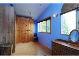 """Photo 16: 3590 W 23RD Avenue in Vancouver: Dunbar House for sale in """"DUNBAR"""" (Vancouver West)  : MLS®# V1052635"""