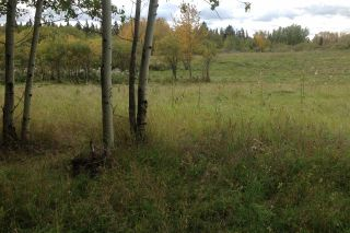 Photo 9: 5B-51222 Rge Road 270: Rural Parkland County Rural Land/Vacant Lot for sale : MLS®# E4133498