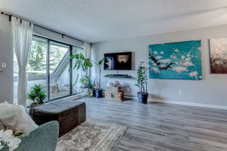 """Photo 1: 408 1210 PACIFIC Street in Coquitlam: North Coquitlam Condo for sale in """"Glenview Manor"""" : MLS®# R2544573"""