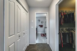 Photo 23: 47 Chapala Landing SE in Calgary: Chaparral Detached for sale : MLS®# A1124054