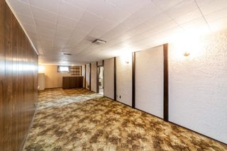 Photo 24: 13323 Delwood Road in Edmonton: Zone 02 House for sale : MLS®# E4247679