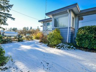 Photo 64: 800 Alder St in CAMPBELL RIVER: CR Campbell River Central House for sale (Campbell River)  : MLS®# 747357