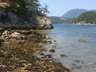 Photo 5: 6051 KINGFISHER Avenue in Sechelt: Sechelt District Land for sale (Sunshine Coast)  : MLS®# R2561268