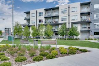 Photo 5: 309 8531 8A Avenue SW in Calgary: West Springs Apartment for sale : MLS®# A1121535