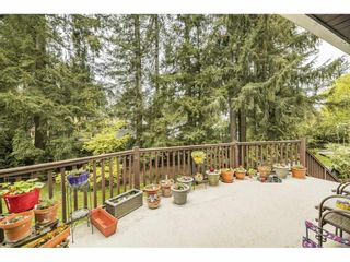 """Photo 26: 3885 203B Street in Langley: Brookswood Langley House for sale in """"Subdivision"""" : MLS®# R2573923"""