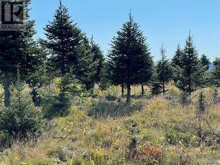 Photo 23: - Saint David Ridge in St. Stephen: Vacant Land for sale : MLS®# NB063465